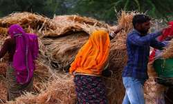 ICAR, Advisory, farmers, Rabi crops, coronavirus outbreak - India TV Paisa