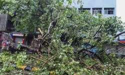 महाराष्ट्र: निसर्ग तूफान की रफ्तार कम हुई, सीएम उद्धव ठाकरे ने प्रशासन से तत्काल राहत सुनिश्चित करने- India TV Paisa