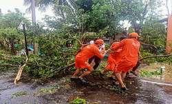 चक्रवात निसर्ग: महाराष्ट्र के रायगढ़ और पालघर जिले हुए प्रभावित, 120 किमी की रफ्तार से चली हवाएं- India TV Paisa