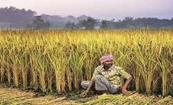 Banks sanction Rs 62,870 crore to over 70 lakh Kisan Credit Card holders- India TV Paisa