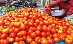 Tomato prices skyrocket to Rs 80 per kg in Delhi-NCR- India TV Paisa