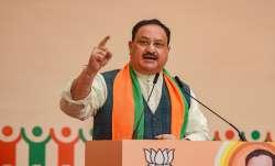 जेपी नड्डा का 'कांग्रेस के शहजादे' पर हमला, पाक नेता का वीडियो ट्वीट कर कहा- '...अब खुलेंगी आंखें'- India TV Paisa