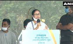 ममता बनर्जी ने कहा- 'नेताजी को सही मायने में समझने की जरूरत, देश में एक राजधानी क्यों, 4 होनी चाहिए'- India TV Paisa