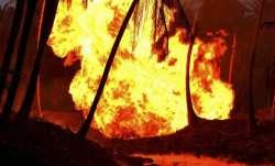 तमिलनाडु के शिवकाशी में पटाखा फैक्टरी में आग लगने से 6 की मौत, कई घायल- India TV Paisa