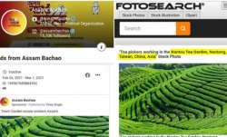 कांग्रेस के विज्ञापन में ताइवान के चाय बगानों की तस्वीर, हेमंत बिस्वा सरमा ने उठाया सवाल- India TV Paisa