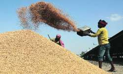wheat procurement on msp mp farmers get relief - India TV Paisa
