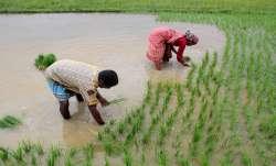 good news for farmers loan waived off in Jharkhand किसानों के लिए खुशखबरी, इस प्रदेश में माफ किए गए - India TV Paisa