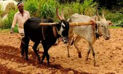 Farmers to get credit at 5 pc interest rate in Rajasthan- India TV Paisa