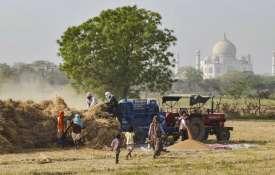 गेहूं की कटाई 81 ...- इंडिया टीवी हिंदी