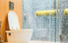 Vastu Tips: इस दिशा में बिल्कुल ना बनवाएं शौचालय, पड़ेगा बुरा असर- India TV Hindi