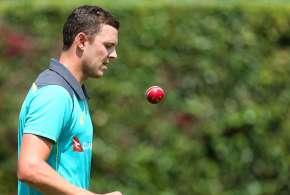 Josh Hazlewood, cricket ball, saliva, saliva ban, ICC, ICC cricket committee- India TV Hindi