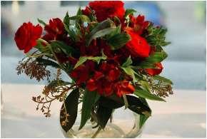 Flower- India TV Hindi