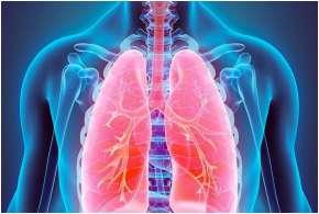Lung cancer- India TV Hindi
