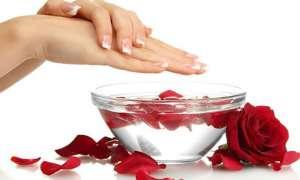 मुहांसों से छुटकारा पाना है तो गुलाब जल का इस तरह करें इस्तेमाल, जल्द दिखेगा असर
