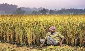 70 लाख किसान क्रेडिट कार्ड धारकों के लिए 62,870 करोड़ के कर्ज को मंजूरी, 2.5 करोड़ किसानों को होगा फायदा