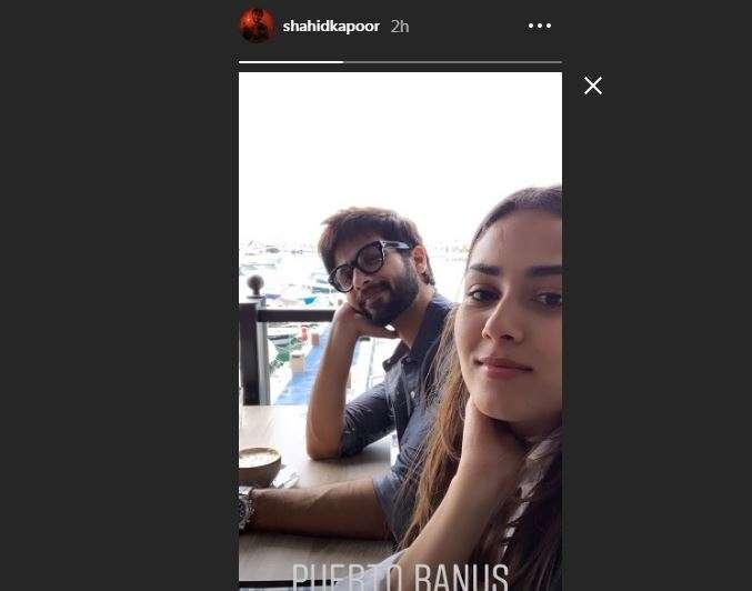 Shahid Kapoor Instagram Story
