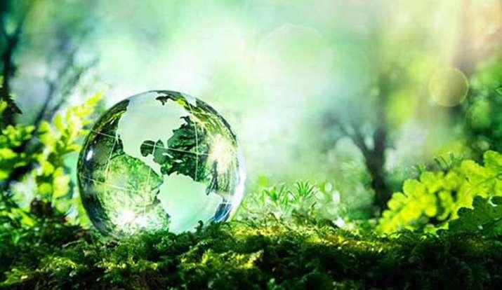 विश्व पर्यावरण दिवस,