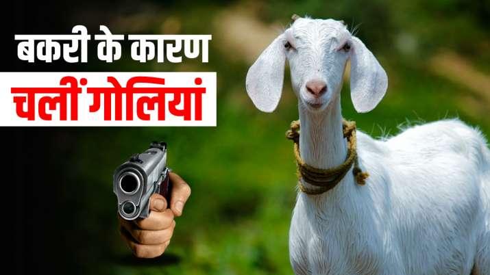 बकरी को लेकर हुआ भयंकर विवाद, बेहद मामूली थी वजह, दो को गंवानी पड़ी जान