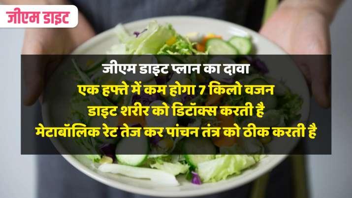 GM Diet Plan