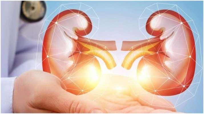 Kidneyproblems