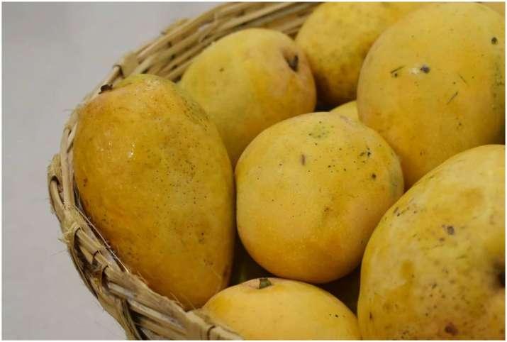 Mango or Aam