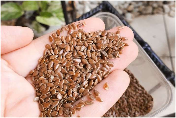 Flax seeds or Alsi