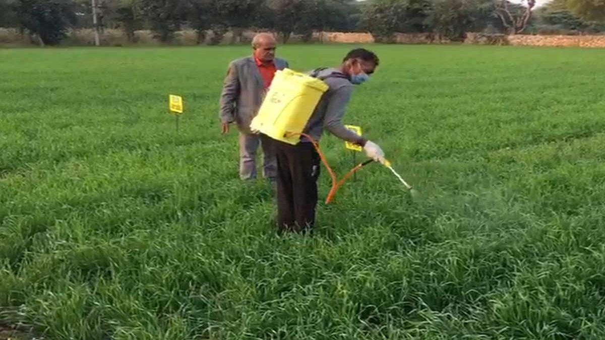 Good news for farmers, IFFCO introduces world's first nano urea   किसानों  को मिला तोहफा, इफ्को ने दुनिया का पहला नैनो यूरिया किया पेश - India TV  Hindi News