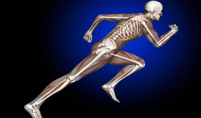 यह आपके शरीर में कैल्शियम की कमी को पूरा करता है। जिससे आपकी हड्डियां मजबूत होगी