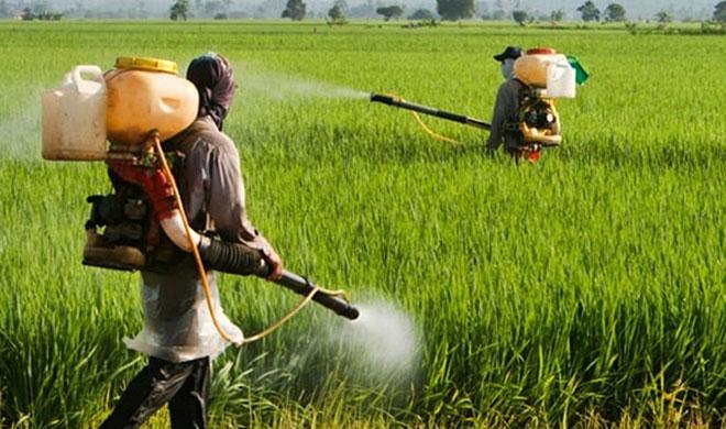 कीटनाशकों के आयात पर...- India TV Paisa