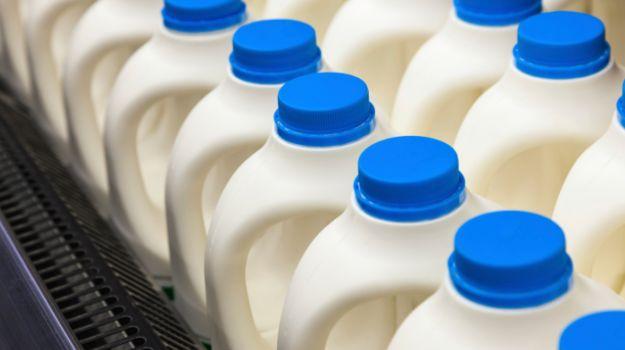 milk- India TV Hindi