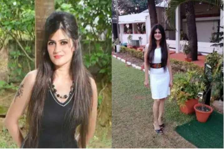 शैलजा द्विवेदी।- India TV Hindi