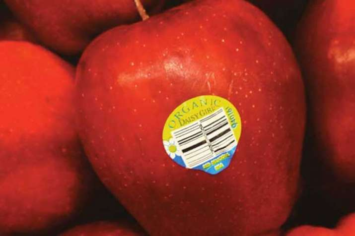 FSSAI ask traders to avoid sticker on fruits- India TV Paisa