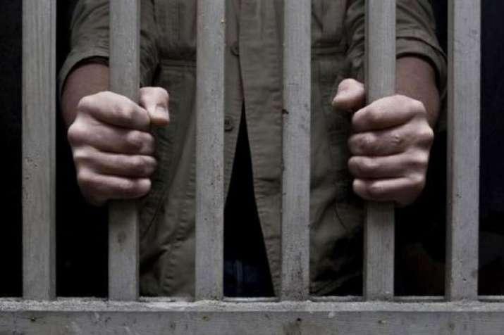 Indian-origin man jailed for molesting Singaporean flight attendant in Singapore | PTI Representatio- India TV