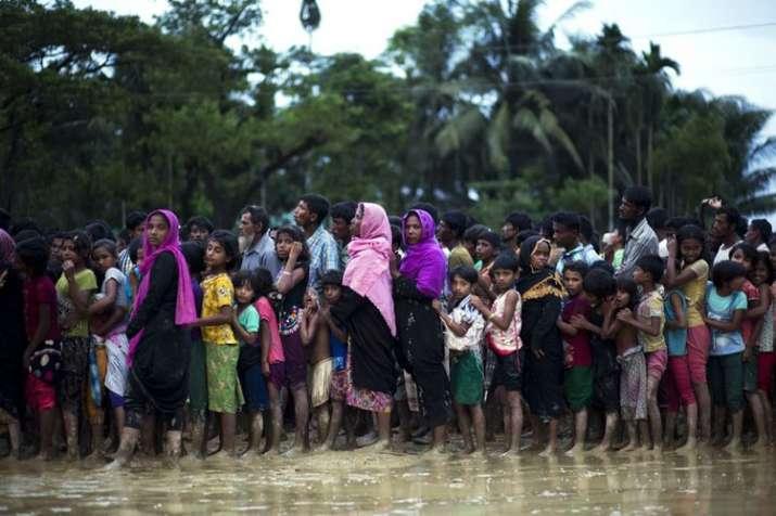 Bangladesh repatriates Rohingya refugees to Myanmar   AP Representational- India TV