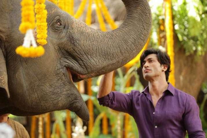Junglee Teaser- India TV