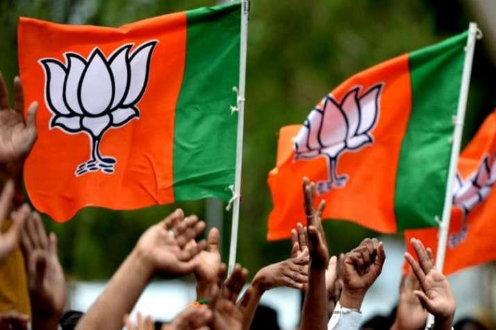 Bharatiya Janata Party releases list of candidates for Delhi, Punjab, Madhya Pradesh and UP- India TV Hindi
