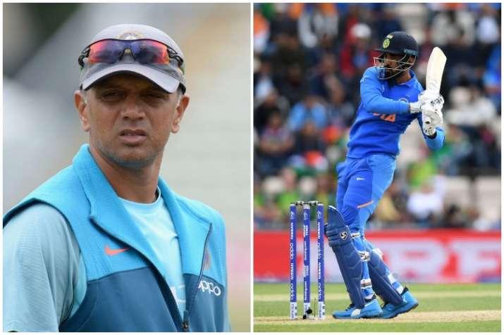 World Cup 2019: लोकेश राहुल को द्रविड की तरह वनडे खिलाड़ी बनाना चाहते है संजय बांगड़ - India TV