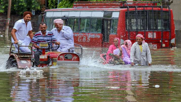 पंजाब के बठिंडा में बाढ़ के पानी के बीच से निकलता ट्रैक्टर