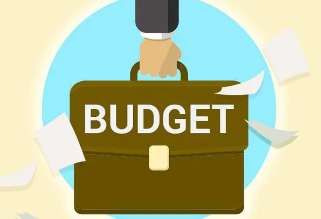 Finance Ministry, social media campaign, budgetary terms - India TV Paisa