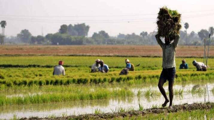 Farm Loan- India TV Paisa