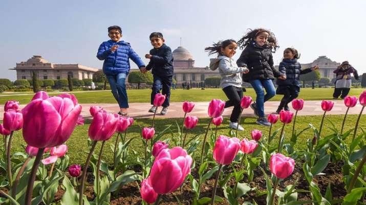 Mughal Gardens 2020, Rashtrapati Bhavan, Udyanotsav, Presidents Estate, Mughal Gardens - India TV Paisa