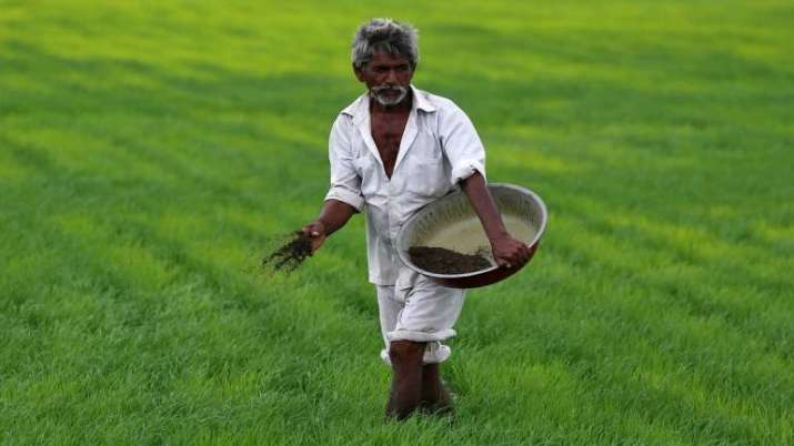 NFL Fertiliser sales jump- India TV Paisa