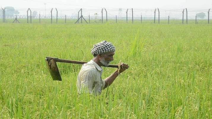Interest subvention on crop loans extended till August 31- India TV Paisa