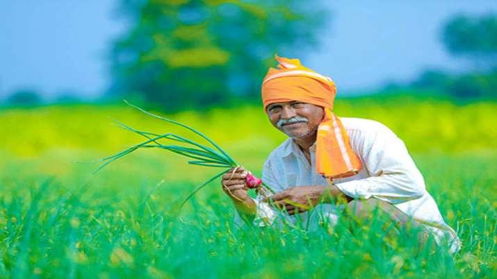 KVIC says NITI Aayog urges states to adopt Commission's model to monetise land resources- India TV Paisa