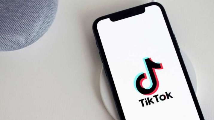 list of top TikTok stars in India- India TV Paisa