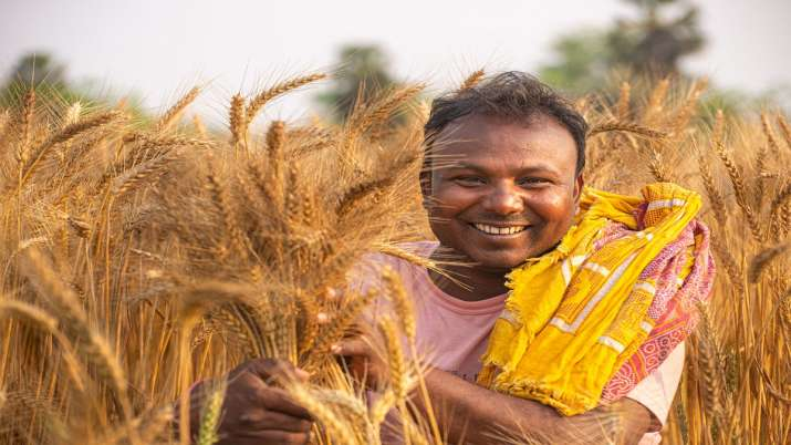 Walmart Foundation announces two new grants to help India's farmers- India TV Paisa