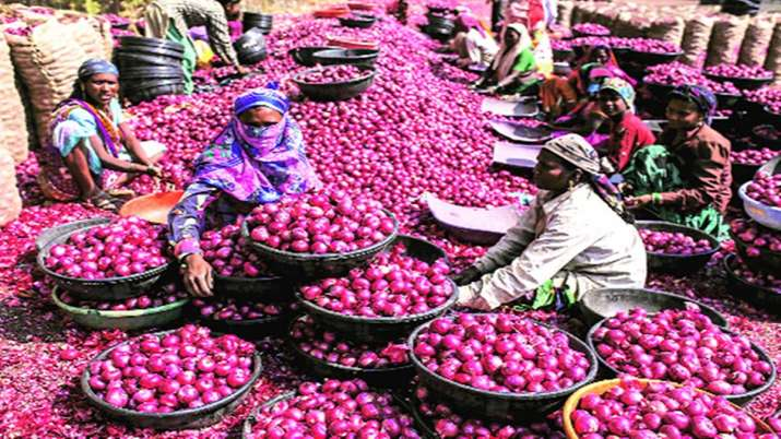 Nafed floats bids for supply of 15,000 tonnes of imported red onions- India TV Paisa