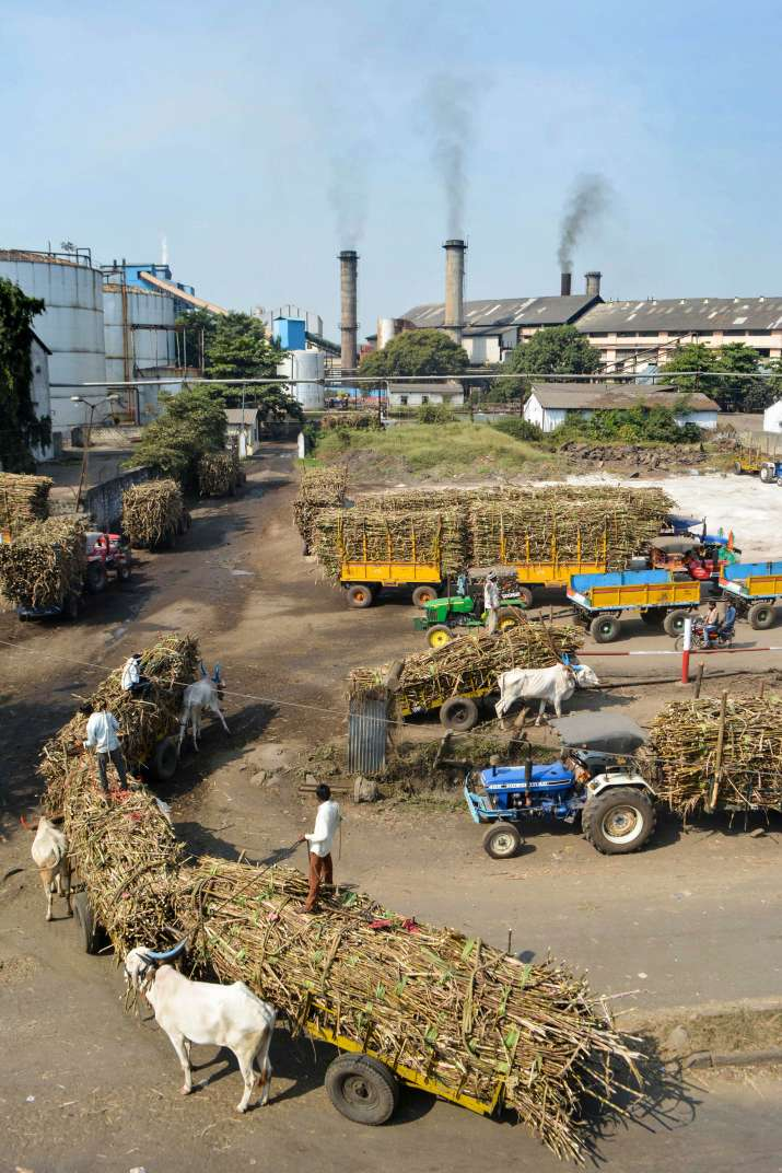 चीनी उत्पादन में...- India TV Paisa