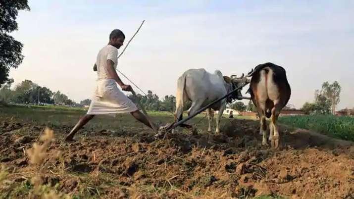 PM Kisan Samman Nidhi: आने वाली है 7वीं किस्त, 2000 रुपये पाने के लिए जरूर करें ये काम- India TV Paisa