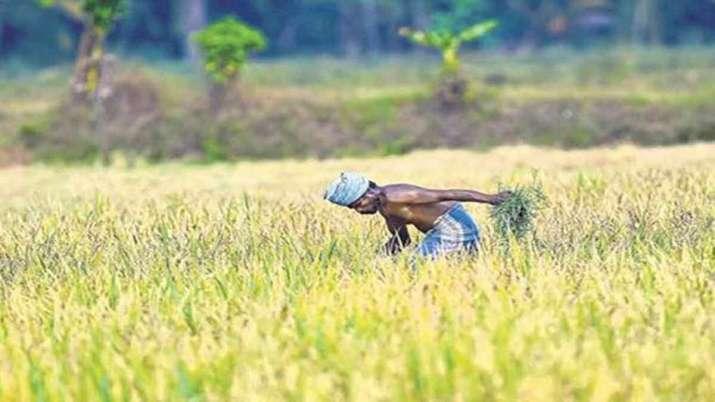 PM Kisan Samman Nidhi Yojana: 1.73 लाख से ज्यादा किसानों के खातों में नहीं पहुंची छठवीं किस्त, आप - India TV Paisa